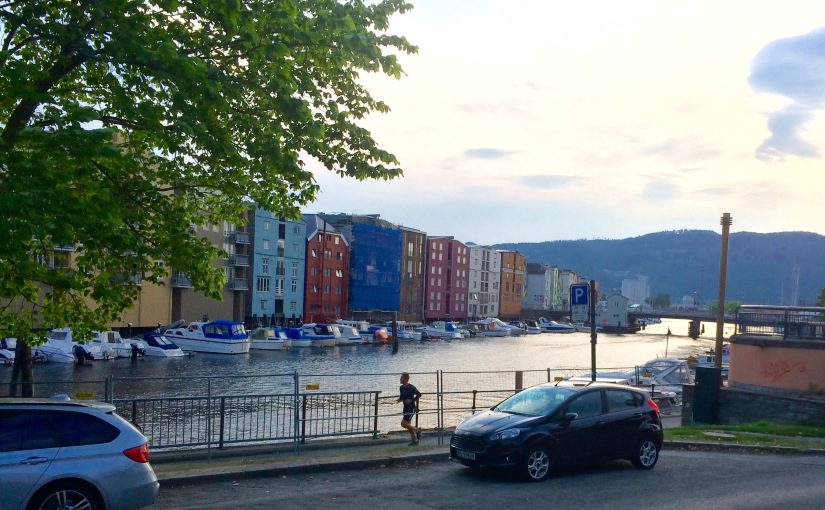 2015 NFB Research conference in Trondheim